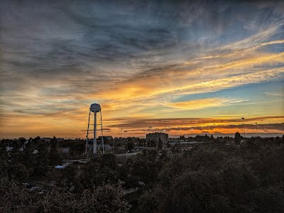 Image of UC Davis Water Tower at Sunset in Winter